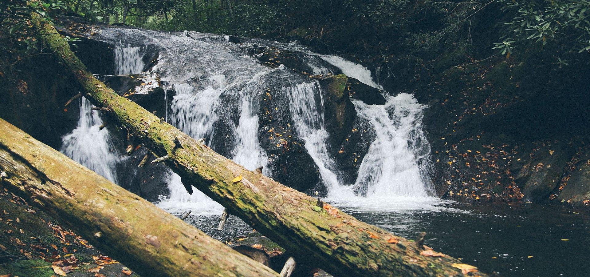 Duke's Creek