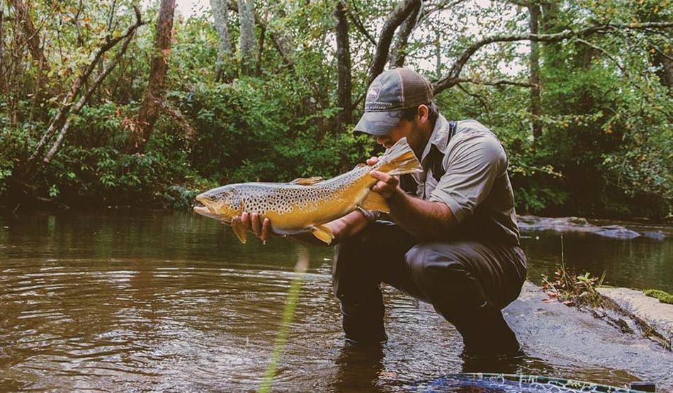 Blue Ridge Fly Fishing