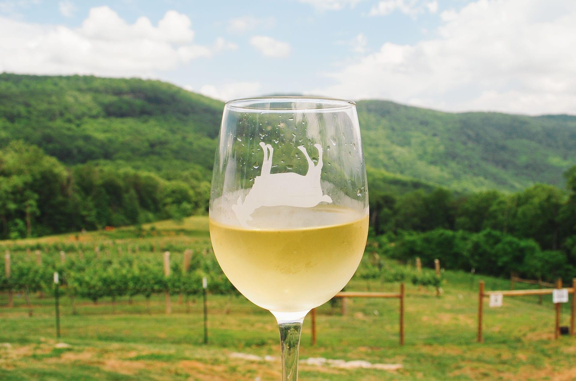 faintinggoat_winery2